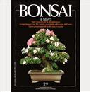 Bonsai & News - €. 7,00