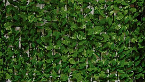 Rete Plastica Da Balcone.Copertura Foglie Acero 19 00 Pagine Verdi Bonsai